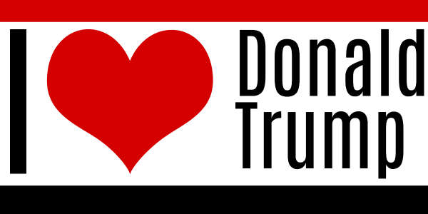photo relating to Printable Trump Sign titled Automobile Truck Magnets for Donald-trump -